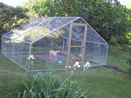 gardenlife chicken run gallery image