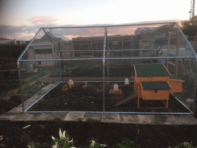 gardenlife chicken run gallery with coop