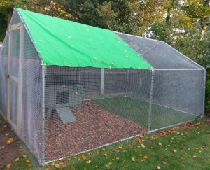 Walk in chicken run with half inch welded mesh.